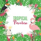 Struttura tropicale con le foglie e gli uccelli esotici illustrazione di stock