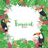 Struttura tropicale con le foglie e l'uccello esotici del tucano royalty illustrazione gratis