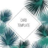 Struttura tropicale variopinta verde del quadrato di progettazione di vettore Foglie di palma nei colori d'annata Carta esotica n royalty illustrazione gratis