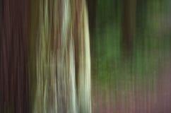 Struttura vaga natura verde Immagini Stock Libere da Diritti