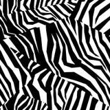 Struttura variopinta senza cuciture della pelle animale della zebra Immagini Stock