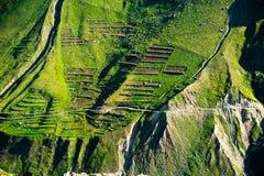 Struttura verde del terrazzo delle montagne dell'Himalaya. L'India Fotografia Stock