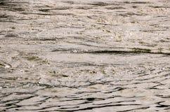 Struttura verde dell'acqua Fotografia Stock Libera da Diritti