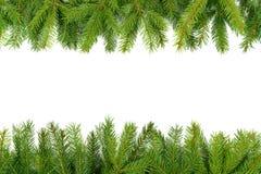 Struttura verde di Natale immagini stock libere da diritti
