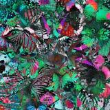 Struttura verde e rosa esotica del fondo dalla compilazione della m. Fotografie Stock Libere da Diritti