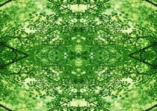 Struttura verde   Modello floreale   Elemento di progettazione   Contesto strutturato fotografia stock libera da diritti