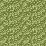 Struttura verde oliva della foglia Fotografie Stock