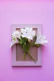 Struttura vuota della foto con il mazzo di Alstroemeria bianco sul BAC rosa Immagine Stock