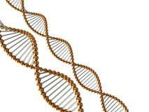 Strutture astratte del DNA Fotografia Stock