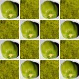 Strutture del kiwi dentro le forme quadrate Fotografie Stock