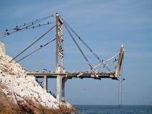 Strutture dell'accumulazione del guano a Islas Ballestas Fotografia Stock