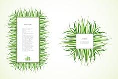 Strutture dell'erba. Vettore Fotografia Stock Libera da Diritti
