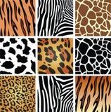 Strutture della pelle animale Fotografia Stock Libera da Diritti