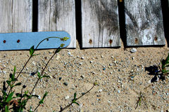Strutture della spiaggia del Michigan Immagine Stock