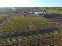 Strutture delle serre, vista superiore Costruzione delle serre nel campo Agricoltura, agrotechnics di terra chiusa Fotografia Stock Libera da Diritti