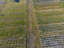 Strutture delle serre, vista superiore Costruzione delle serre nel campo Agricoltura, agrotechnics di terra chiusa Fotografia Stock