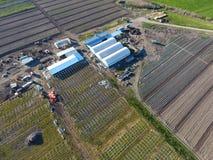 Strutture delle serre, vista superiore Costruzione delle serre nel campo Agricoltura, agrotechnics di terra chiusa Fotografie Stock