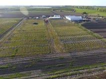 Strutture delle serre, vista superiore Costruzione delle serre nel campo Agricoltura, agrotechnics di terra chiusa Immagine Stock