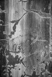 Strutture e crepe della parete Immagini Stock Libere da Diritti