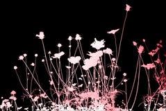 Strutture ed ambiti di provenienza astratti del fiore Fotografia Stock