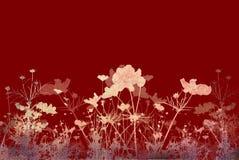 Strutture ed ambiti di provenienza astratti del fiore Fotografie Stock