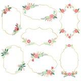 Strutture ed insegne dei fiori dell'annata messe illustrazione vettoriale