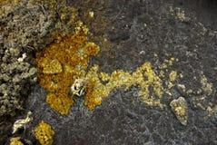 Strutture minerali Fotografie Stock Libere da Diritti