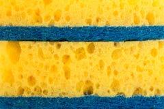 Strutturi la gomma espansa gialla, la spugna sintetica con i grandi pori, fondo del primo piano Immagini Stock