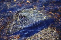 Strutturi le chiare acque trasparenti della sfuocatura del lago del mare Immagini Stock Libere da Diritti