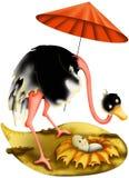 Struzzo della madre con il parasole Fotografia Stock Libera da Diritti