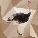 Struzzo poligonale di colore isolato su fondo marrone Illustrazione di vettore royalty illustrazione gratis
