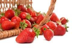 Strwaberry apetitoso en la cesta Foto de archivo libre de regalías