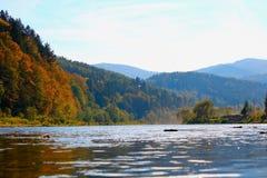 Stryi flod i de Carpathian bergen i höst Fotografering för Bildbyråer