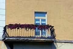 Stryka balkongen och blomkrukor med röda blommor med ett fönster på en brun vägg Royaltyfri Bild