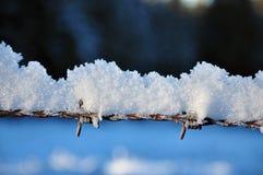 Stryka staketet i vinter med snö- och iskristaller Arkivfoton
