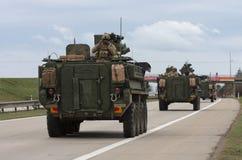 Strykers, veículos blindados rodados conduz na estrada Fotografia de Stock Royalty Free