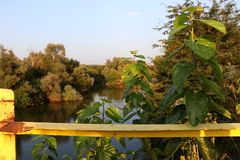 Strymonas flod, sikt från en gammal bro i bygden Serres nordliga Grekland royaltyfri bild