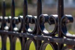 Strzępiasty żelaza ogrodzenie z rozmytym tłem zdjęcie stock
