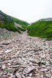 Strzępiasty gruz skały między krzakami na górze obraz royalty free