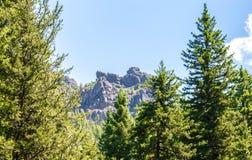 Strzępiasty Montana halny szczyt obramiający luksusowymi drzewami zdjęcie royalty free