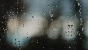Strzał okno zakrywający z padać opuszcza zbiory