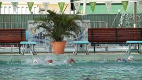 Strzał grupa pływaczki na basenie zbiory