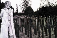 Strzał Przy Jutrzenkowym pomnikiem obrazy royalty free