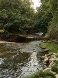 Strzał rzeka przy Lambro parkiem w Mediolan w jesień sezonie zdjęcie royalty free