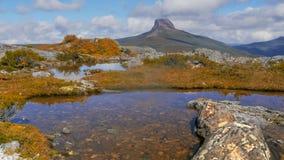 Strzał wielki liszaj zakrywał skałę w wysokiej górze Tarn z stajnia blefem w tle fotografia stock