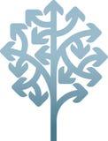 Strzałkowaty drzewo Zdjęcia Stock