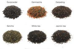 strzału studia herbata Fotografia Stock