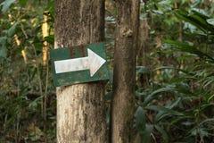 Strzała znak na drzewie Zdjęcia Stock