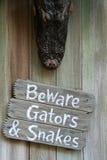 strzeż się aligatorach obraz royalty free
