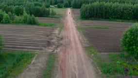 Strzela od behind, kamera podąża mężczyzna na rowerowym kolarstwie na drodze gruntowej przy zmierzchem zbiory